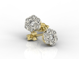 Diamonds 14ct yellow & white gold earrings JPK-87ZB