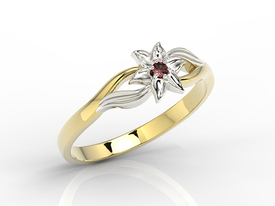 Garnet 14ct yellow & white gold ring BP-14ZB