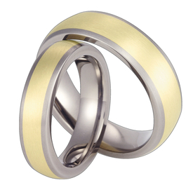 Pair of the titanium wedding rings with yellow gold SWTG-57/5,5