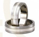 Titanium wedding rings with silver SWTS-79/6
