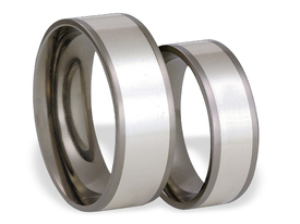 Titanium wedding ring with silver SWTS-55/6-m