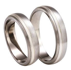Titanium wedding ring with silver SWTS-77/5-m