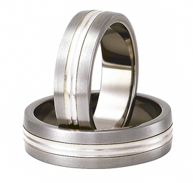 Titanium wedding ring with silver SWTS-79/6-m