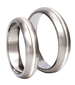 Titanium wedding ring with silver SWTS-81/5-m