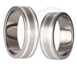 Pair of the titanium wedding rings with silver SWTS-31/7