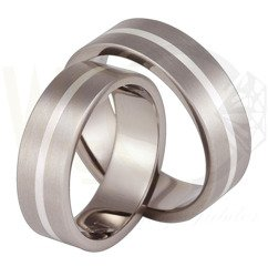 Pair of the titanium wedding rings with silver SWTS-42/7