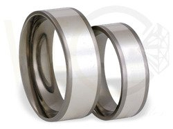 Pair of the titanium wedding rings with silver SWTS-55/6