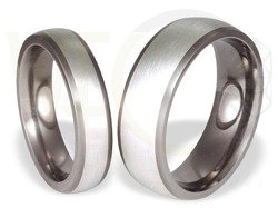 Pair of the titanium wedding rings with silver SWTS-57/5,5