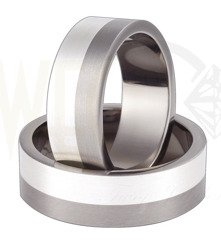 Pair of the titanium wedding rings with silver SWTS-58/7