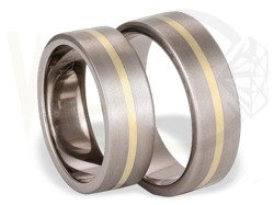 Pair of the titanium wedding rings with yellow gold SWTG-42/7