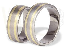 Pair of the titanium wedding rings with yellow gold SWTG-53/7