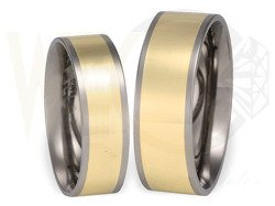 Pair of the titanium wedding rings with yellow gold SWTG-55/6
